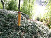 泸县县城供水复线工程水土保持设施验收报告(贝博官方网址本)
